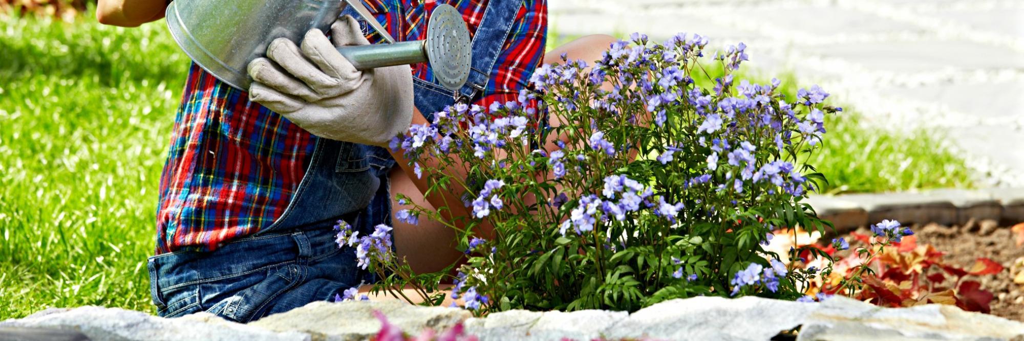 jardinage a domicile